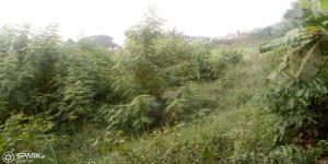 Land for sale Magboro private estate Magboro Obafemi Owode Ogun