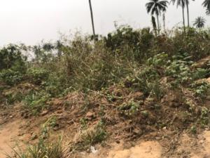 Mixed   Use Land Land for sale Airport Road  Uyo Akwa Ibom