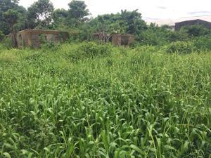 Land for sale Badore road Badore Ajah Lagos