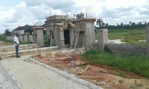 Land for sale NGO OKPALA IMO STATE Imo - 1