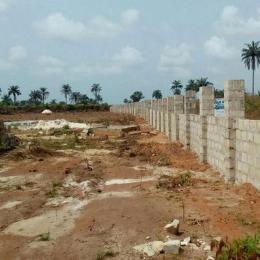 Land for sale AMAKOHIA UBI Imo - 1
