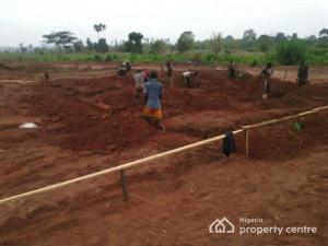 Mixed   Use Land Land for sale Oshimili Delta