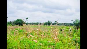 Mixed   Use Land Land for sale Epeme Aradagun Badagry Lagos