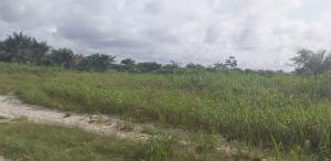 Industrial Land Land for rent Odeomi village after Dangote Refinery  LaCampaigne Tropicana Ibeju-Lekki Lagos