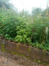 Residential Land Land for sale Baba Celeste street, Via Onigbagbo village Ido Oyo