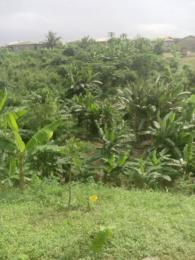 Commercial Land Land for sale Singer Sango Ota Ado Odo/Ota Ogun