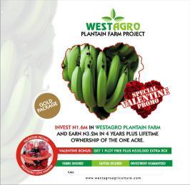 Commercial Property for rent Obafemi Owode Ogun