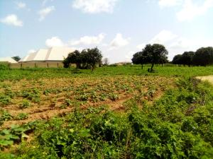 Residential Land Land for sale Makarfi Estate Kaduna South Kaduna