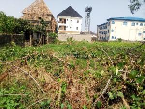 Residential Land Land for sale .. Amuwo Odofin Lagos