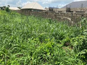 Mixed   Use Land Land for sale - Owerri Imo