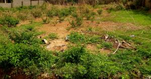 Land for sale Rimi Kamazou Chikun Kaduna