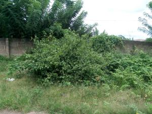 Land for sale  NASFAT ring road Egbedore Osun