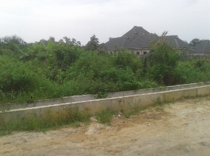 Residential Land Land for sale Behind NTA  New Layout Port Harcourt Rivers