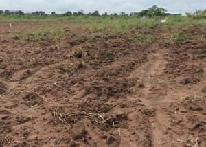 Residential Land Land for sale Centenary City, Enugu. Enugu Enugu