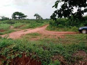 Mixed   Use Land Land for sale Ibuzor road, behind Junic estate Asaba Delta