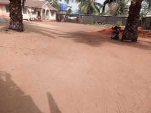 Mixed   Use Land Land for sale Behind Hotel Benezia, off DBS road Asaba Delta