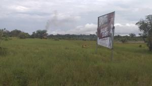 Residential Land Land for sale Dallas Court Ise town Ibeju-Lekki Lagos
