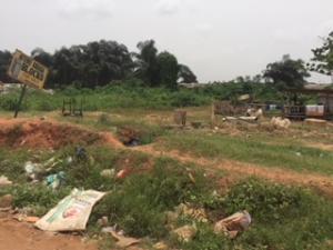Land for sale Ijedodo Ojo Lagos