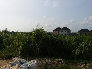 Land for sale Before Isheri Bridge Bucknor Isolo Lagos