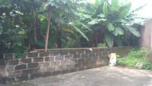 Residential Land Land for sale Agodo Egbe, via Cele Egbe-Ikotun Egbe Ikotun/Igando Lagos