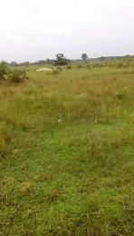 Land for sale Madina by traila park bus stop Agbara Agbara Agbara-Igbesa Ogun