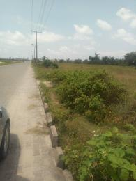 Land for sale orchid hotel road,Lafiaji,Lekki chevron Lekki Lagos - 0