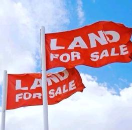 Residential Land Land for sale Lawu Estate,River Basin Junction, Western By Pass Minna Chanchaga Niger