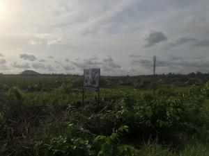 Residential Land Land for sale Balogun  Majek Sangotedo Lagos