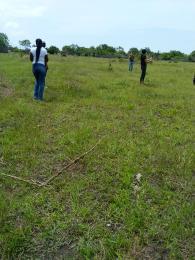 Land for sale Behind monastery road Sangotedo  Monastery road Sangotedo Lagos