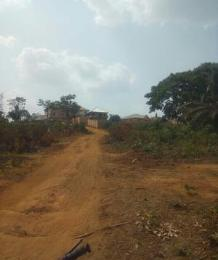 Land for sale Opposite Anambra state polytechnic permanent site Awka North Anambra
