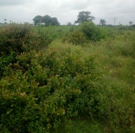 Mixed   Use Land Land for sale Lepia Village, Facing Express close to Dangote Jetty, Ibeju-Lekki Lagos