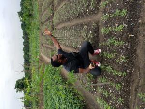 Mixed   Use Land Land for sale Alaka Alaka/Iponri Surulere Lagos