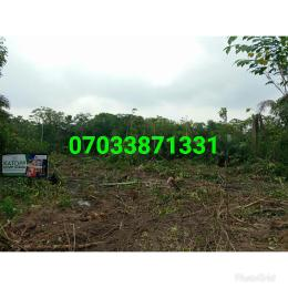 Residential Land Land for sale Imokun Town Epe Road Epe Lagos