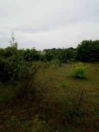 Land for sale Oloruntun Town Eleranigbe Ibeju-Lekki Lagos