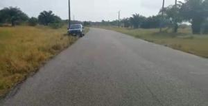 Residential Land Land for sale Mafogunde LaCampaigne Tropicana Ibeju-Lekki Lagos
