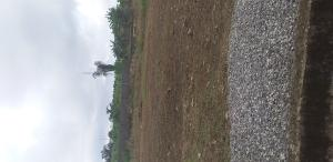 Mixed   Use Land Land for sale 3 fagbile phase 3 isheri oshun Isheri Egbe/Idimu Lagos