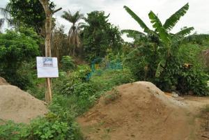 Mixed   Use Land Land for sale  Mosa town Ilogbo-Asowo, Ota, Ogun State.  Ado Odo/Ota Ogun