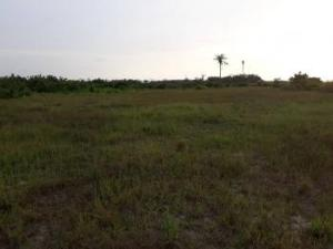 Mixed   Use Land Land for sale Simawa Odogbolu Ogun