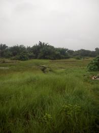Land for sale Itori-Ewekoro Ewekoro Ogun - 0