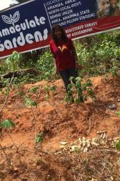 Residential Land Land for sale Within an Estate  Awka North Anambra
