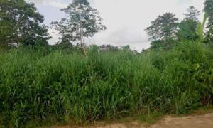 Mixed   Use Land Land for sale Ikot Eneobong Community Estate off 8-miles Calabar Cross River