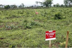 Land for sale Federal Housing Estate, Obada Abeokuta Ogun