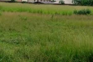 Land for sale Umudike Ikwuano Abia