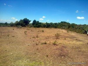 Land for sale Technical college road Edo