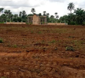 Residential Land Land for sale Ulakwo, Before Sam Mbakwe International Airport. Owerri Imo