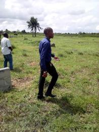 Residential Land Land for sale off Channels Tv Avenue Isheri North Ojodu Lagos
