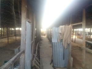 2 bedroom Commercial Property for sale oil village ,mahuta new extension Kaduna South Kaduna