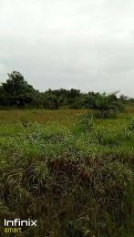 Mixed   Use Land Land for sale Ikorodu Ikorodu Lagos