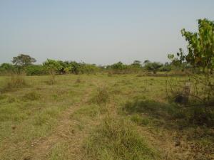 Mixed   Use Land Land for sale Lagos Ibadan Expressway wawa Ifo Ifo Ogun
