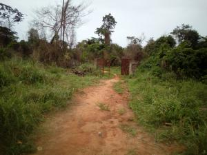 Mixed   Use Land Land for sale Along Lagos Ibadan expressway by sagamu interchange Sagamu Sagamu Ogun